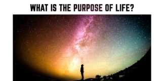 What-is-the-purpose-of-life-motivational-quote-about-life-night-sky-stars-universe
