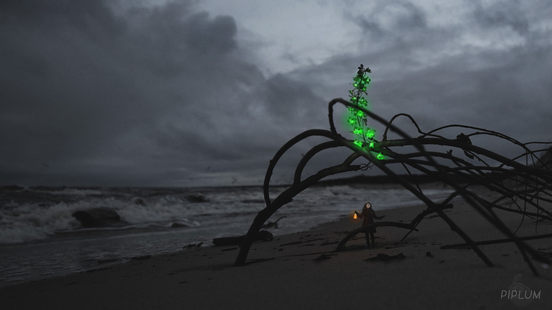 Found-gigantic-green-flower-in-the-beach-surreal-photography.