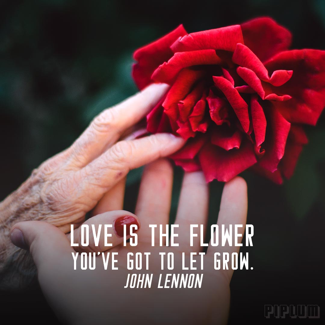 Love-quote-young-and-old women-holding-the-same-red-rose-blossom