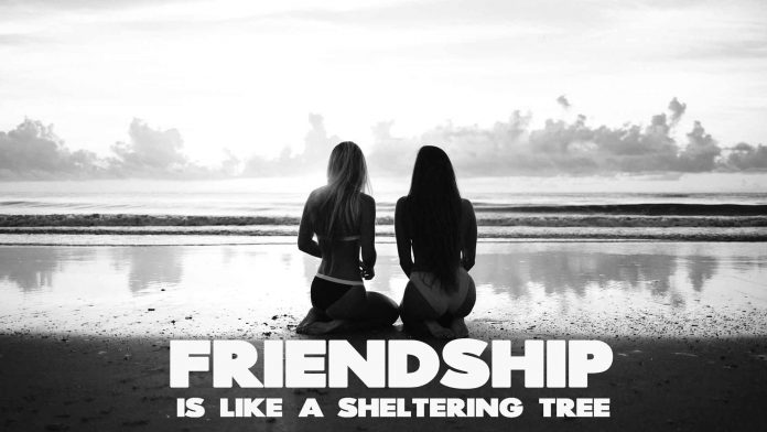 Friendship-is-like-a-sheltering-tree.-Inspirational-Friends-Quote.