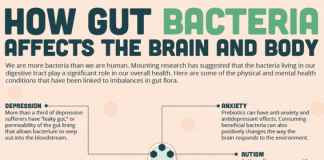 How-gut-bacteria-affects-the-brain-and-body