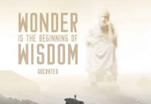 inspirational Quote. Wonder is the beginning of wisdom. Socrates