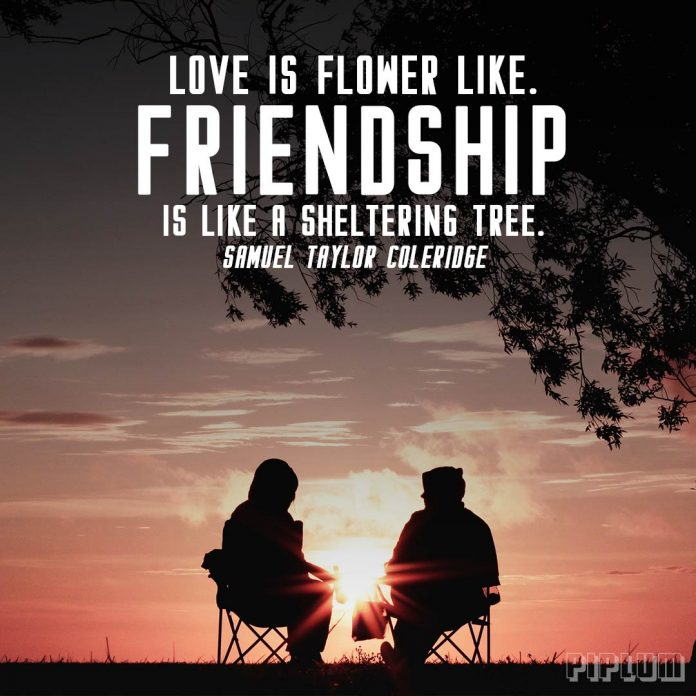 Friendship Quote. 2 friends sitting under the tree and disqussing about something.