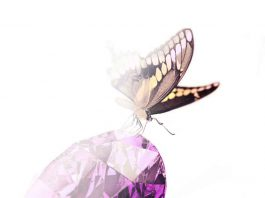gemstone-purple-butterfly