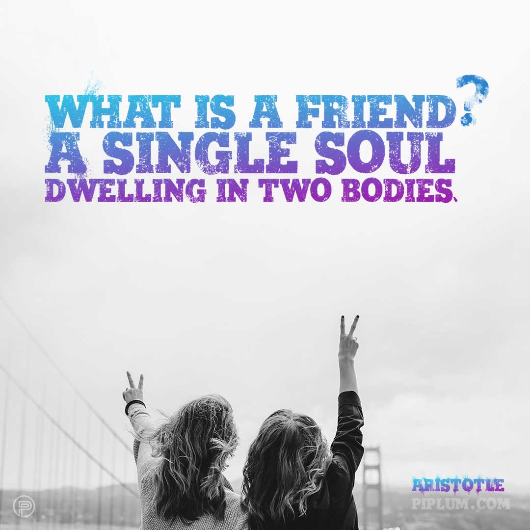Best-friends-quotes.-What-is-a-friend.-A-single-soul-dwelling-in-two-bodies