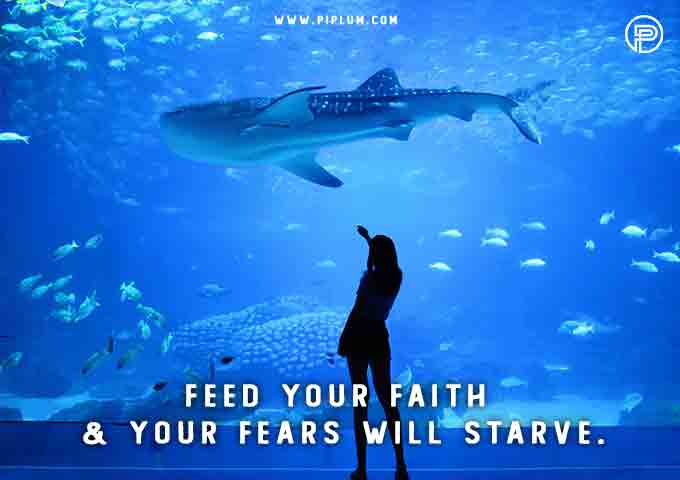 shark-underwater-Feed-your-faith-fears-will-starve-Inspirational-COVID-19-quote