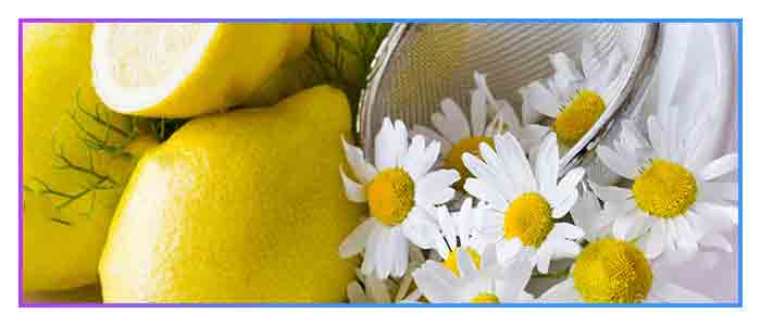 Chamomile-brightens-facial-skin-and-hair