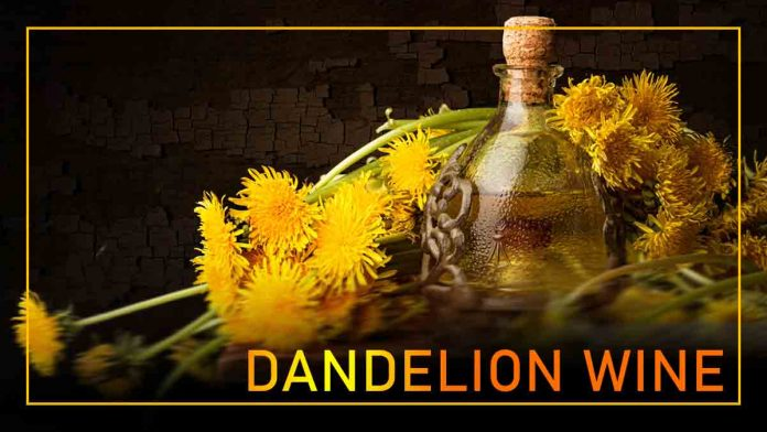 Homemade dandelion wine. Recipe of natural taste of nature.