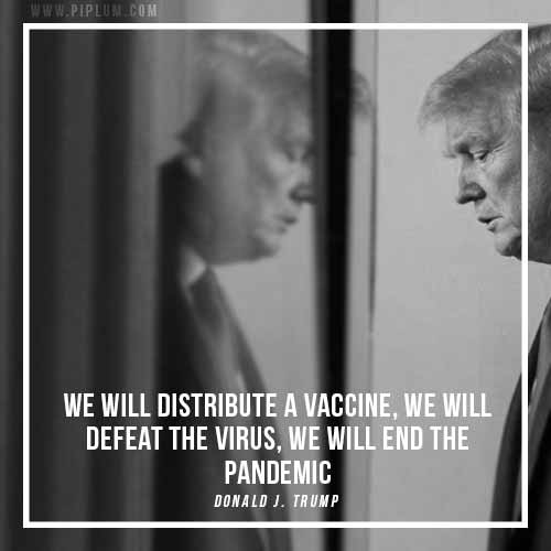 We'll defeat the virus. Vaccine quote by Donal J. Trump.