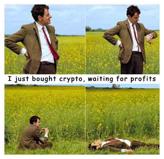 I just bought crypto, waiting for profits. We all know that feeling.